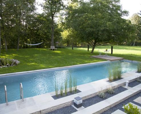 Natürlich gereinigtes Wasser im Biotop Living-Pool