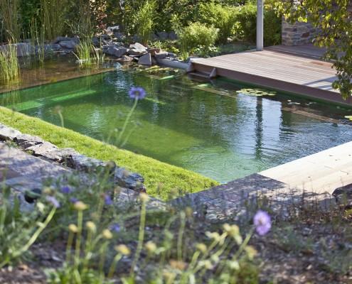 Der Bade - und Regenerationsbereich in Swimmingteich