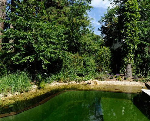 Terrasse zum Schwimmteich