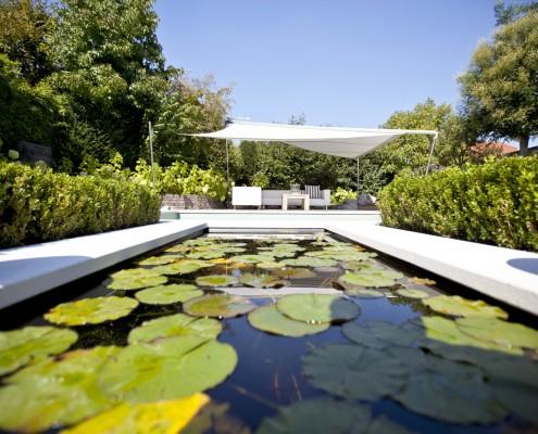 Biotop Living Pool mit Wasserrosen